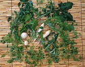 Shepherd´s purse Turnip Chinese radish Seven spring herbs Nara Japan Nara Food
