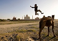 Boy jumping from camel with Taj Mahal in background, Agra. Uttar Pradesh, India