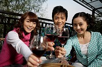 Portrait of young friends toasting wine glasses
