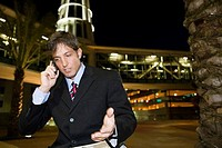 Businessman communicating on cellphone and gesturing