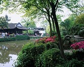 Spring, Zhuozhengyuan, World Heritage, Suzhou, Jiangsu, China, flower, pond, watersurface, stone, bridge, people, April