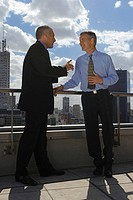 Happy businessmen talking on the roof