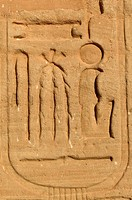 The Temple of Ramesses II _ Royal cartouche