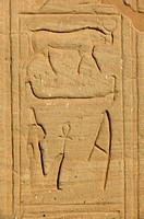 The Temple of Ramesses II _ Hieroglyphs