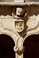 Casa de las Conchas courtyard. Salamanca. Castilla y Leon. Spain.