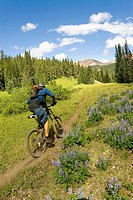 Mountain biker rides the trail up to Deer Pass, Southern Chilcotin Mountains, British Columbia, Canada.