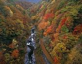 Autumn Nakatsugawa ravine Kitashiobara Fukushima Japan