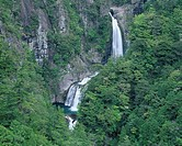 Fresh green Waterfall of seven_fold Fudo Shimokitayama Nara Japan