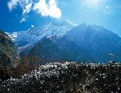 Annapurna,Himalayas,Nepal