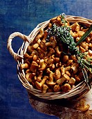 girolle mushrooms