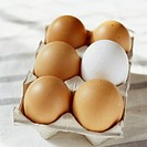 Box of eggs (thumbnail)