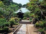 Kaizo_ji Temple Backyard Kamakura Kanagawa Japan temple