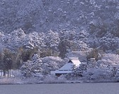 Snow Hirosawa Pond Private house Kyoto Kyoto Japan Pond House Tree