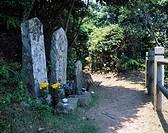 Kumanokodo, Nakahechi, Koya slope, Mitarai, Stone statue, Buddha, Way, Statue, World heritage, Wakayama, Japan