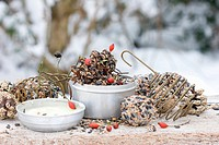 Bird food, palm fat and rose hips