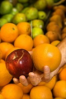 Close_up of Caucasian male hand holding apple and orange