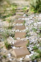 Stepping stone pathway with oyster shells