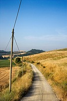 Telephone poles beside dirt road leading through rolling hills in countryside of Tuscany, Italy