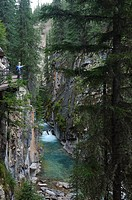 Tourists on catwalk over Johnston Canyon creek