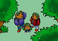 Three bears looking up and standing in woods, high angle view