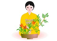 Woman sitting and enjoying Japanese flower arrangement in Japanese style clothing, front view, Japan