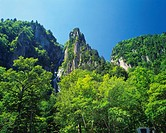 the Sounkyo Cliff, Surrounded By Trees and Green Bushes, Low Angle View, Hokkaido Prefecture, Japan