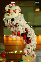 Lion Dance in Action