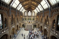 UK, London, Natural History Museum, Great Britain, Europe, England, hall, people, visitors, museum, building, architec