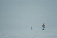 Ski mountaineers descend Nordenskiold Glacier in whiteout blizzard.