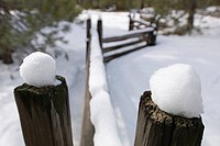 Fence post at Donner Lake area covered in fresh snow.