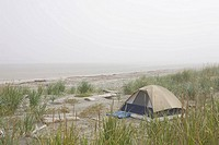 A tent sits in the dunes by the beach.
