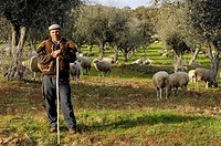 Jose Manuel Antonio Porfidio, Shepherd near Evora, Alentejo, Portugal
