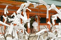 Japan, Kyoto, paper with prayers wrapped around branches in front of Heian Jingu Shinto Shrine