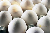 Eggs in carton, close-up