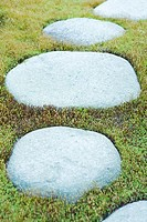 Stepping stones in grass, close-up