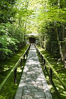 Stone path in forest, building in background (thumbnail)