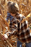 Two boys 4-5 running through cornfield, rear view