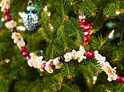 Close-up of Christmas tree with popcorn-cranberry garland