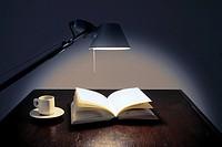 Book, Desk lamp, Desk light