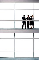 Group of business colleagues in modern office building (thumbnail)