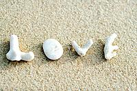 Coral pieces spelling out the word love on the beach
