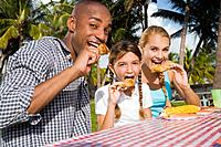Mixed Race family eating at picnic table