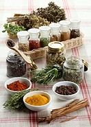 Still life: Herbs and spices