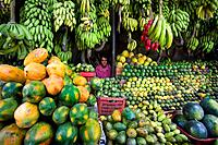 Sri Lanka, Asia, Kandy City, Fruits Shop, fruit, female vendor, stand, woman, bananas, melons, exotic, tropical, shopp