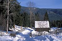 Canada, North America, America, Nakiska Ranch, near Wells Gray Provincal Park, British Columbia, snowbound, snow, land