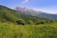 europe, italy, marche, visso, sibillini mountains, bove mountain
