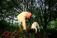 truffle searcher