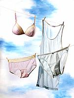 Female underwear bras and panties