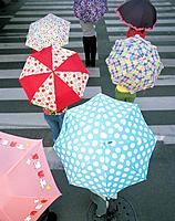 People holding umbrellas on a crossing