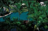 Swimming pool in Park Royal Hotel, Penang, Malaysia